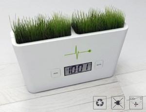 Eco-Friendly Digital Watch-3