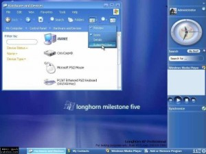 Windows Longhorn was a codename for the next upcoming version of Microsoft Windows after the Windows XP. It was released in the year 2005 but people hesitated to shift to it and sticked to Windows XP because Windows XP is still considered to be as the most stable version of Microsoft Windows.